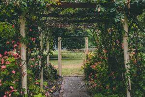 Giardino sostenibile 6 consigli per rendere l'outdoor ecologico