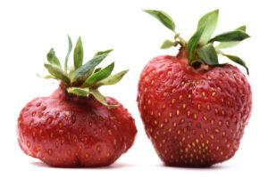frutta e verdura imperfette - iniziative green