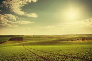 Quando si può costruire su un terreno agricolo una nuova costruzione