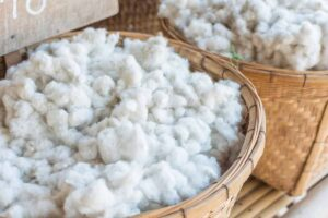 Che cosa significa cotone sostenibile