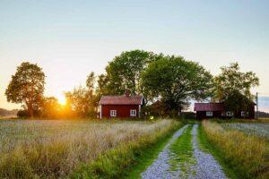 Creare una fattoria autosufficiente