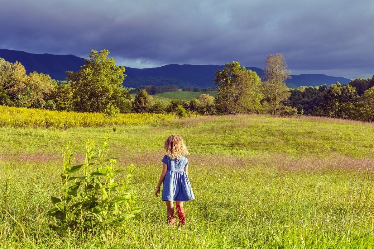 Vivere in campagna