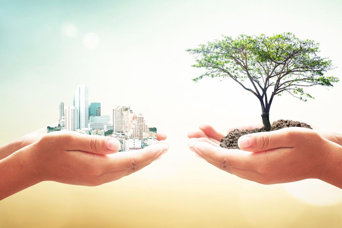 architettura sostenibile. I principi alla base di una nuova visione del mondo.