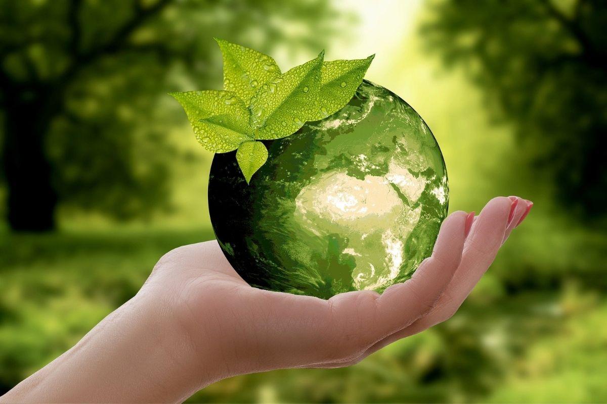 aziende sostenibili
