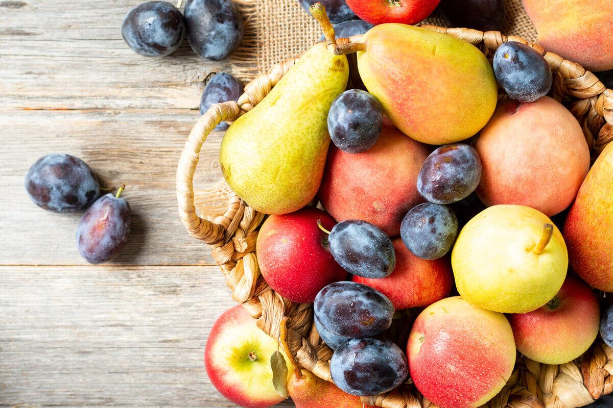 Moscerini - frutta