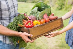 come acquistare online dai piccoli produttori agricoli
