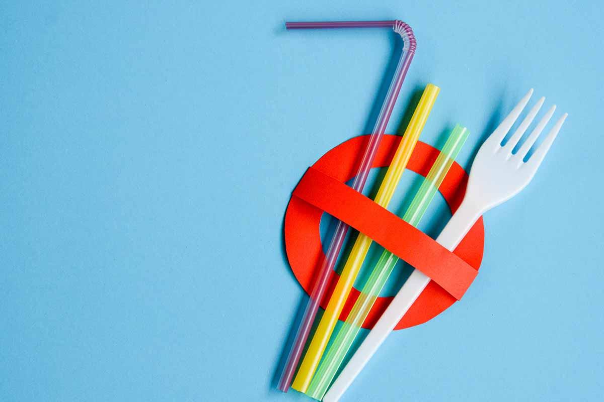 La plastica monouso è stata bandita in tutta Europa