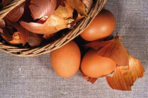 pitture ecologiche ricavate da scarti alimentari di uso quotidiano
