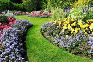 Come disporre i fiori in giardino