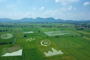 Il Piemonte favorisce l'inserimento dei giovani agricoltori nel settore primario