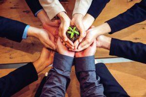 Sinergie sostenibili. Storie di imprenditoria femminile e ecologia