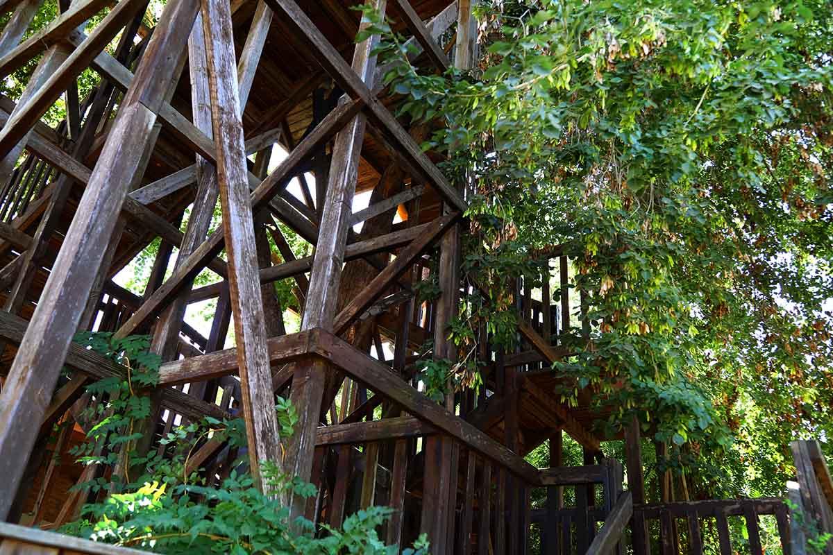 la casa di Horace Burgess in Tennessee è l'edificio sull'albero più grande al mondo