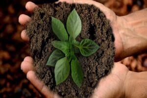 prodotto sostenibile
