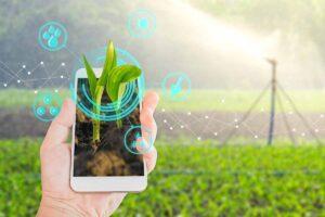 Le iniziative sostenibili nel mondo le app che aiutano l'ambiente