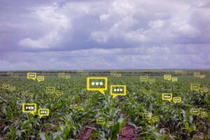 Smart Agriculture coltivazione intelligente e sostenibile con lo IoT