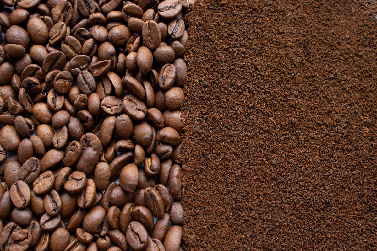 scarti caffè