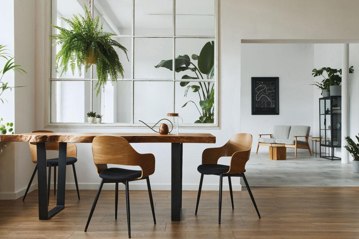 In affitto o di proprietà come scegliere la soluzione più adatta